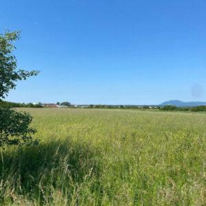 Zemljište, poljoprivredno 7500 m2