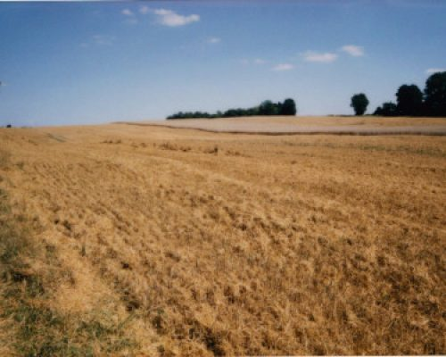 zemljište 2